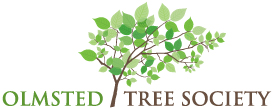 olmsted tree society