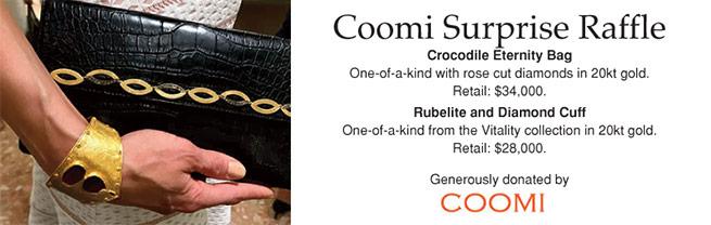 coomi-raffle-header