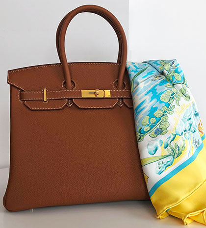 Birkin-and-scarf-webpage
