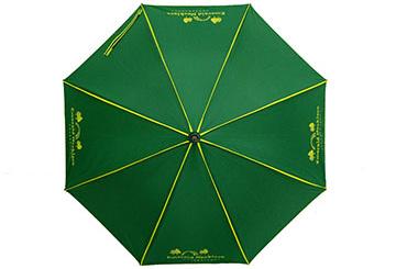 2018-landing-umbrella