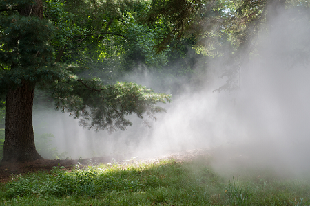 how to visit fog x flo the emerald necklace conservancy